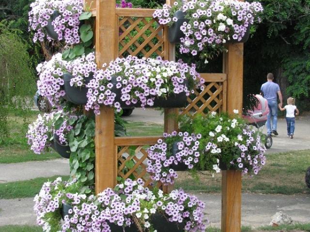 Як зробити красиві кашпо для квітів для саду, дачі, вулиці дерев'яні, з цементу й тканини, гіпсу, пластикових пляшок, шини, ромашка своїми руками. Лебідь кашпо з гіпсу: майстер-клас з докладним описом. Як купити кашпо під квіти на Алиэкспресс?