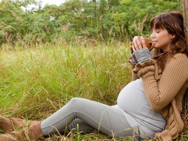Які трави можна пити при вагітності, які не можна? Сечогінні, жовчогінні, відхаркувальні, кровоспинні, заспокійливі трави при вагітності
