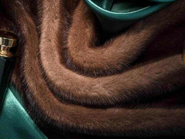Скандинавська норка: як відрізнити від інших видів норки? Як дізнатися — скандинавська це норка: відмітні ознаки. Як відрізнити скандинавську норку від китайського хутра, підробки: поради