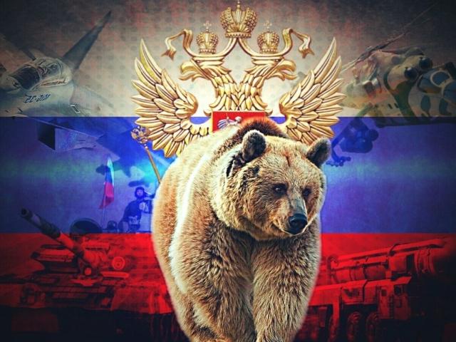 Тварини-символи країн світу, Росії: опис, фото