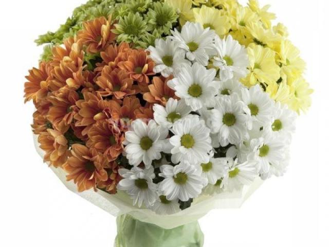 Весільний букет нареченої з хризантем своїми руками. Як зробити гарний букет хризантем і троянд, гербер, альстромерій, лілій, ірисів, еустоми?