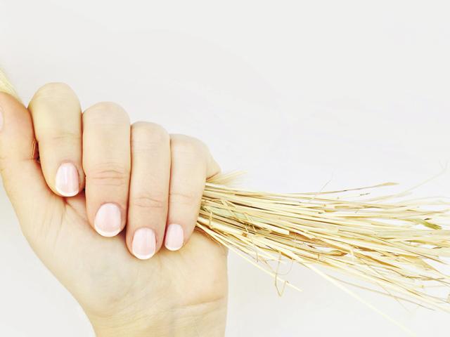 5 головних причин появи посічених волосся. Як відновити посічені волосся?