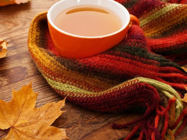 Чай з кленового листя: як приготувати? Ферментований чай з листя клена