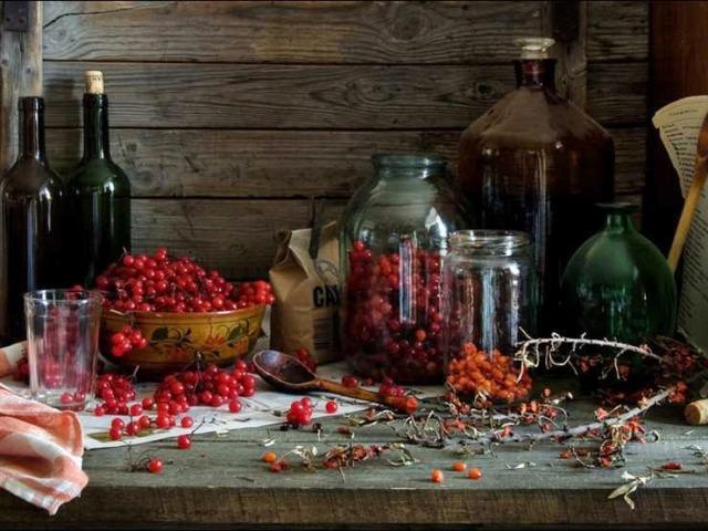 Спиртні напої з ягід червоної калини — домашнє вино, настоянка, лікер і наливка: найкращі рецепти