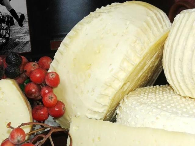 Сир з козячого молока в домашніх умовах: м'який, твердий, пористий, плавлений, бринза — прості рецепти з покроковим приготуванням