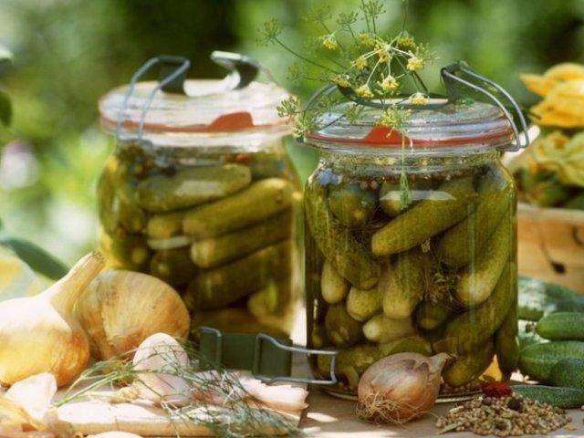 Засолювання огірків на зиму: гаряча, холодна, суха. Кращі рецепти соління огірків в пакеті, в бочці, з оцтом, без оцту, з лимонною кислотою, без розсолу, малосольних
