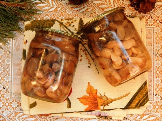 Мариновані гриби маслюки на зиму хрусткі, з часником, оцтом, в томаті з цибулею, насінням гірчиці, по-корейськи, зі стерилізацією і без стерилізації, холодним способом у банках: простий, смачний покроковий рецепт. Солянка з маслюками на зиму: смачний ре
