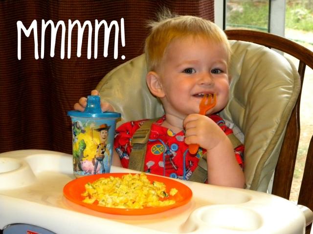 Як приготувати дитячий омлет для однорічної дитини з курячих та перепелиних яєць? Можна омлет однорічній дитині, при вагітності, грудне вигодовування?