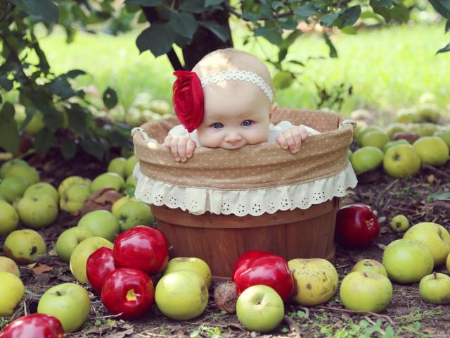 Зі скількох місяців можна давати немовляті свіже, запечене яблуко, компот, кисіль з свіжих і сушених яблук? Яблуко давати дітям: до їди чи після? Страви для грудних дітей до року з яблук: найкращі рецепти