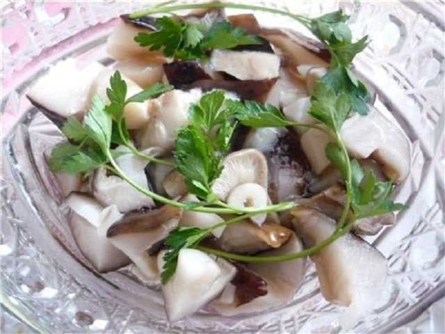 Засолювання грибів рядовки на зиму в банках: кращі рецепти. Як засолити і замаринувати гриби рядовки на зиму в домашніх умовах? Маринад для консервування грибів рядовки: рецепти