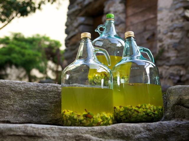 Вино з агрусу в домашніх умовах простий рецепт. Як приготувати смачне домашнє вино з чорного, червоного і зеленого агрусу з дріжджами і без дріжджів?