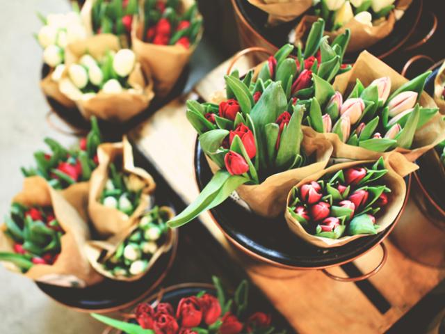 Як доглядати за тюльпанами у вазі, щоб зберегти їх довше всього: поради. У яку воду, якої температури краще ставити зрізані тюльпани, і що потрібно додати у воду для тюльпанів, щоб вони довше простояли? Як часто міняти воду в тюльпанах?