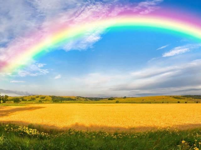 Загадки про веселку, кольори веселки з відповідями для дітей і дошкільнят: кращий збірник