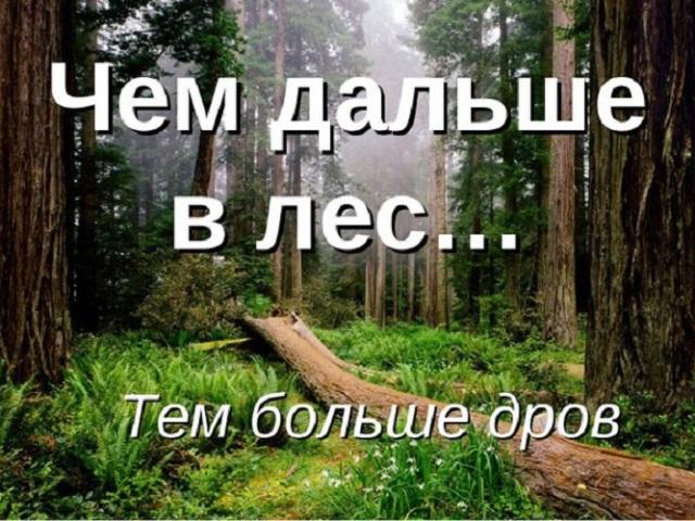 «Чим далі в ліс, тим більше дров»: походження, значення прислів'я
