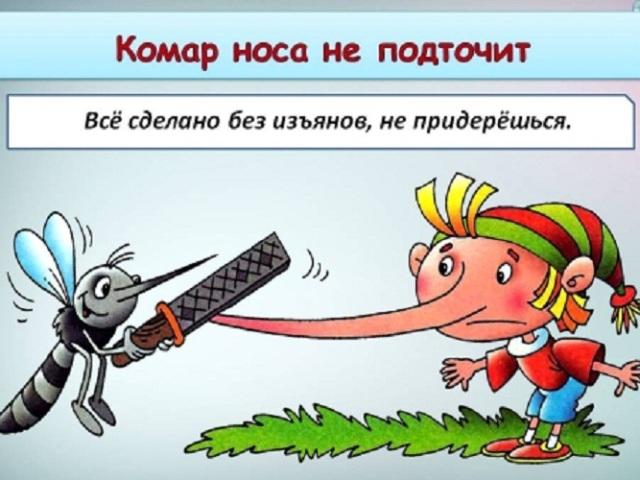 Що означає фраза «комар носа не підточить»: значення і походження фразеологізму