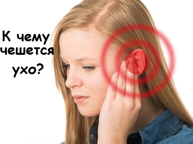 До чого свербить ліве і праве вухо всередині і зовні, мочка вуха у дівчини, жінки, чоловіки: народні прикмети по днях тижня. До чого свербить ліве і праве вухо всередині і зовні, мочка вуха вранці і ввечері, сверблять обидва вуха?
