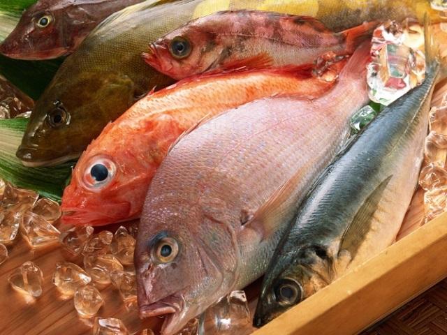 Яка морська риба найкорисніша для здоров'я людини: назви, короткий опис
