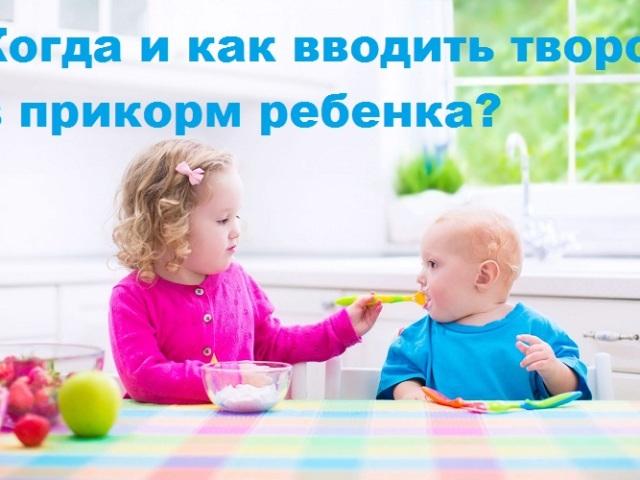 Коли і як вводити сир в прикорм дитині?