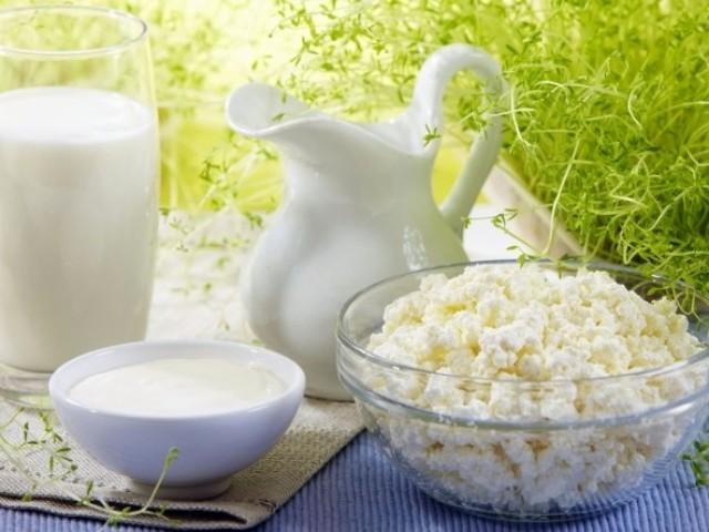 Що краще, корисніше: сир або йогурт або кефір? Де більше кальцію в сирі, кефірі або йогурті?