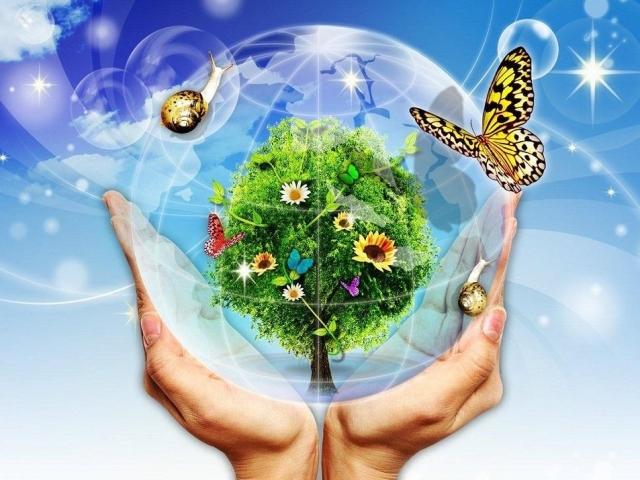 Малюнок, плакат на тему «Захистимо свою планету». День захисту Землі: коли святкується?