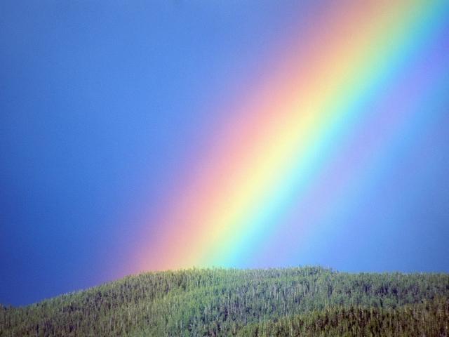 Чому і як з'являється веселка? Яке явище природи лежить в основі веселки? Чому різнобарвна веселка? Буває веселка взимку?