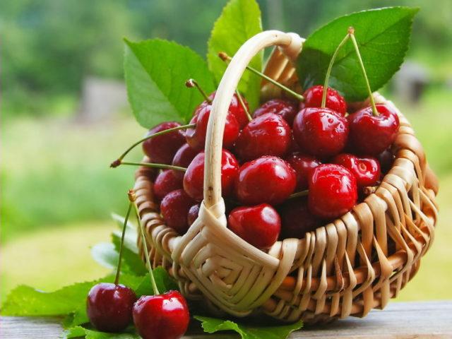 Що таке вишня: фрукт або ягоду?