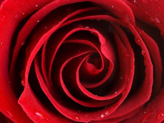 Як отримати червоний колір і близькі відтінки при змішуванні?