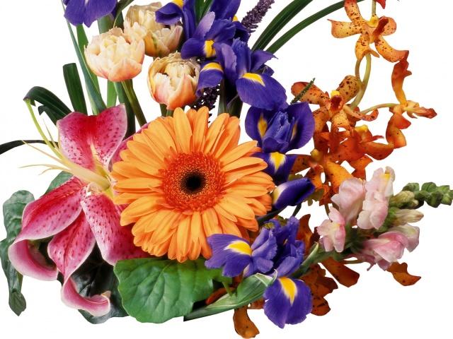 Красиві букети квітів з білих, синіх, червоних, жовтих, фіолетових ірисів своїми руками: фото. Квітка ірис – значення, символ