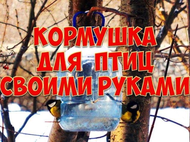 Годівниці для птахів з пластикових пляшок своїми руками: ідеї, опис, інструкція, фото. Як зробити годівницю для птахів з 1,5 літрової, великий 5 літрової пластикової пляшки, з 2 пляшок?