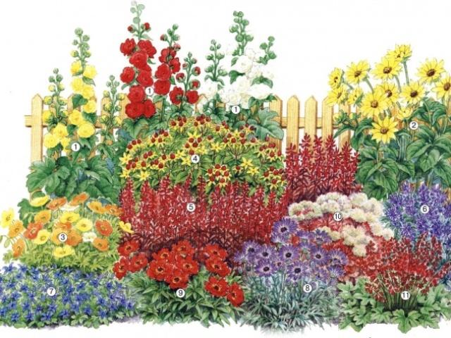 Як намалювати клумбу з квітами олівцем поетапно для початківців і дітей? Як намалювати клумбу з квітами поетапно фарбами?
