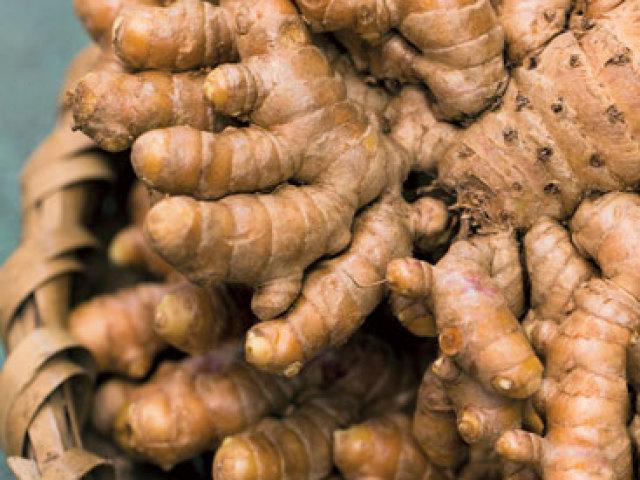 Імбир — вирощування у відкритому ґрунті з кореня на дачі і в горщику в домашніх умовах: посадка, догляд, обробка, полив, розмноження, поради. Цвітіння імбиру в домашніх умовах: терміни, фото квітки імбиру