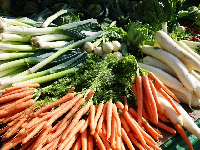 Посадка та вирощування моркви навесні і восени насінням у відкритому грунті: терміни, способи, глибина і схема посадки, найкращі врожайні сорти, догляд після посадки, поради. Як часто поливати морква після посадки і чим підгодовувати?