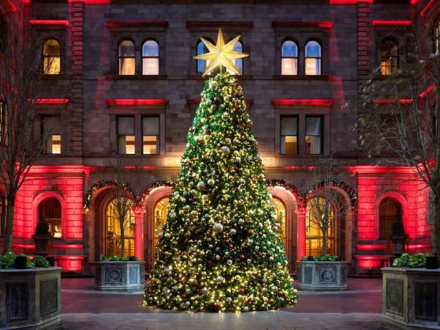 Яка була найвища новорічна ялинка в світі, Європі і де вона стояла? Найвища новорічна і різдвяна ялинка рекорд Гіннеса: висота, фото. Фотографії найкрасивіших високих новорічних та різдвяних ялинок світу