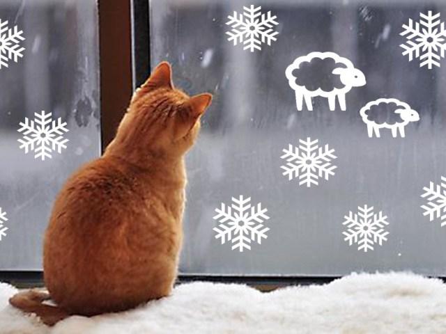 Як намалювати зимові морозні візерунки на вікні гуашшю, фарбами, зубною пастою і губкою поетапно: інструкція для новорічного оформлення вікон, фото. Морозні візерунки на вікні взимку — приклади малюнків на новорічному вікні: фото