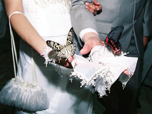 Сюрпризи на весілля молодятам від друзів, подружок нареченої, батьків, сестри, кращої подруги, родичів: оригінальні ідеї. Який сюрприз зробити від нареченої нареченому і нареченій від молодого на весіллі: кращі ідеї весільних сюрпризів
