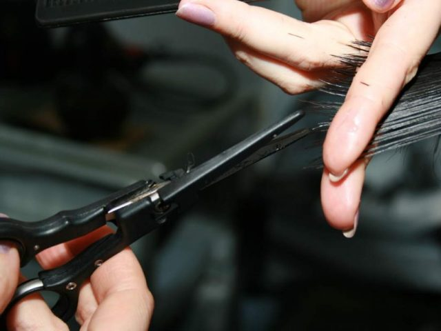 Як і чим наточити ножиці домашні, манікюрні, перукарні, філіровочні, кравецькі, садові, по металу, овечі просто, швидко і доступно в домашніх умовах? Як наточити ножиці голкою, на точилі, бруском: інструкція