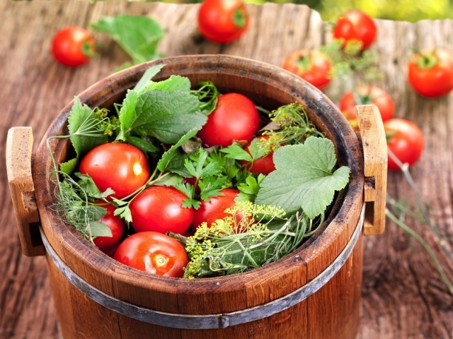 Як посолити помідори в бочці холодним способом: кращі рецепти. Квашені помідори червоні і зелені в бочці на зиму і малосольні: російські рецепти і рецепт з гірчицею. Як засолити помідори в банках, як з бочки: рецепт