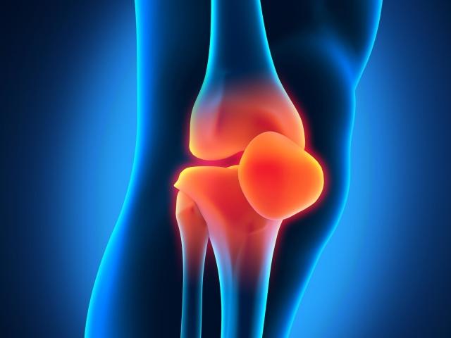 Які суглоби бувають у людини? Як влаштований суглоб: анатомія, схема. Види суглобів за будовою, формою, руху: опис