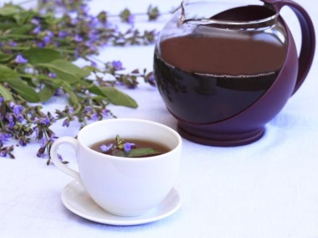Шавлія для припинення лактації: чай, відвар, масло — як застосовувати?