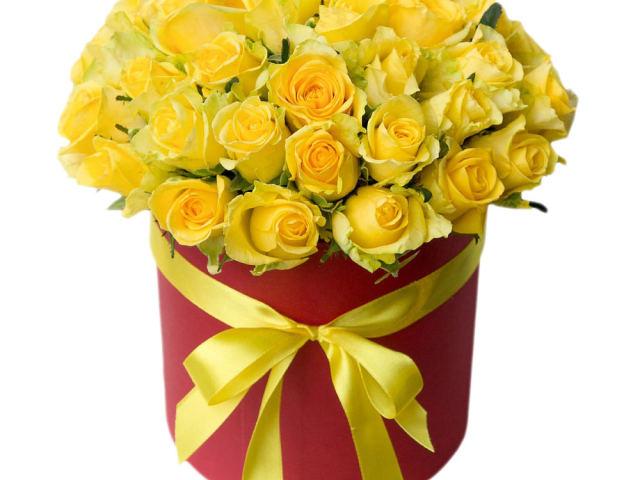 Жовті троянди: перекази, легенди, сучасне трактування — чи варто дарувати жовті троянди?
