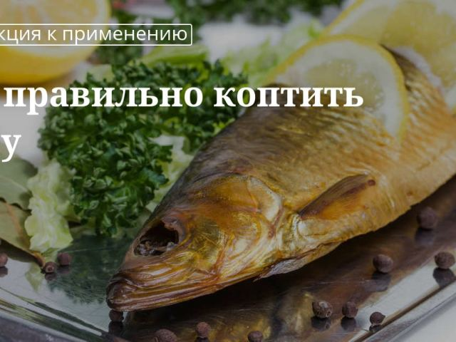 Як вибрати, підготувати рибу для копчення, обробити, засолити перед копченням: способи. Яку деревину взяти, щоб закоптити рибу в коптильні? Як коптити рибу в коптильні холодним і гарячим способом?