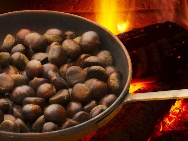 Каштани їстівні і неїстівні — як відрізнити плоди