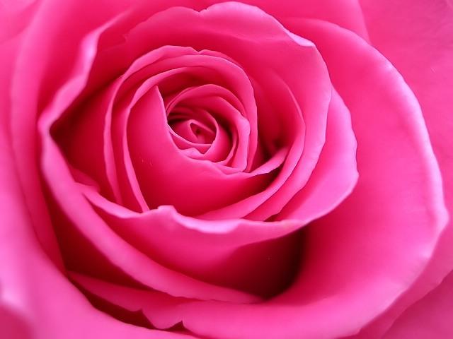 Як отримати рожевий колір при змішуванні фарб?