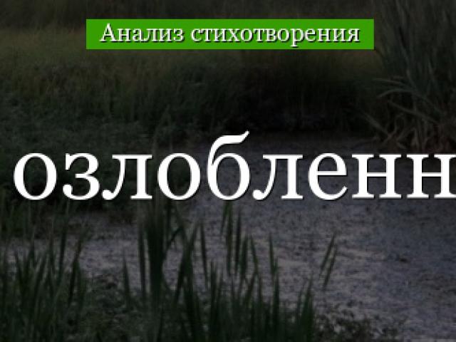Вірш «Блаженний озлоблений поет» Якова Полонського: аналіз