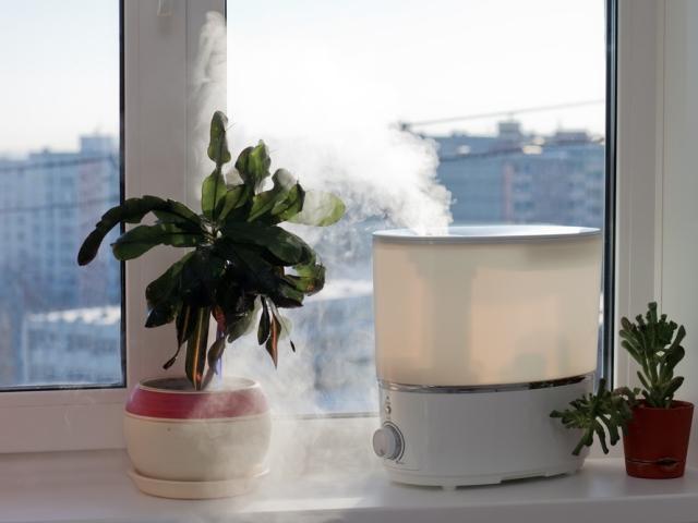 Яка вологість повітря повинна бути в квартирі, будинку: норма для дитини взимку і влітку. Як і чим визначити вологість повітря в квартирі, будинку? Як купити прилад для вимірювання вологості повітря у квартирі на Алиэкспресс? Як зменшити і підвищити волог