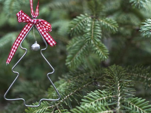 Як зберегти новорічну ялинку вдома довше? Як зробити, в що ставити живу ялинку вдома, щоб ялинка простояла і пахла довше, щоб довго не обсипалася? Розчин для живої ялинки: склад