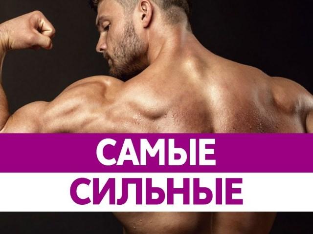 Хто найсильніший чоловік у світі за всю історію людства? Топ-10 найсильніших спортсменів у світі