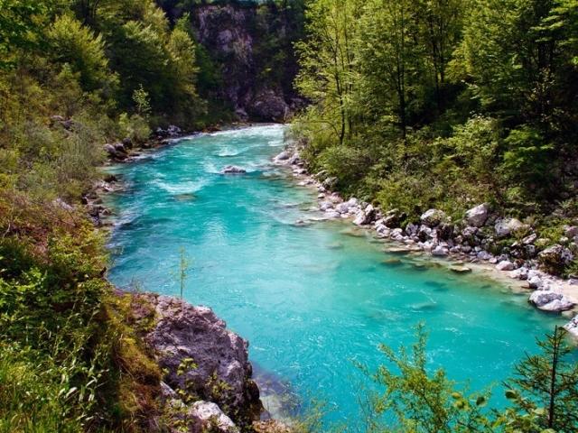 Що таке річка: з чого вона складається, визначення. Що таке режим, устя, басейн, дельта, падіння, витік, ухил, харчування, заплава, приплив, русло, верхів'я, долина, закрут, пороги, довжина, сток, пониззя, уріз, тераса, стрижень, початок, рукав, акваторія