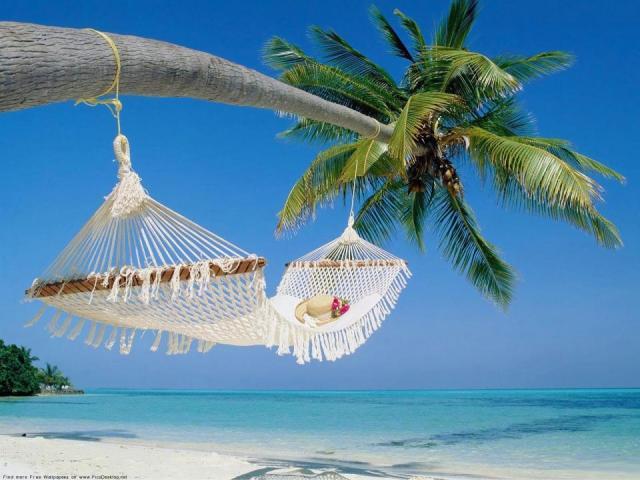 Чи є у працівника право на використання відпустки за перший рік роботи? Відпустка у перший рік роботи ТК РФ: підстави, порядок надання