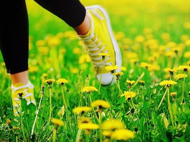 Як і чим відіпрати плями від кульбаби з одягу, джинсів, куртки? Видалити сліди від молочка кульбаби з кольорового одягу?